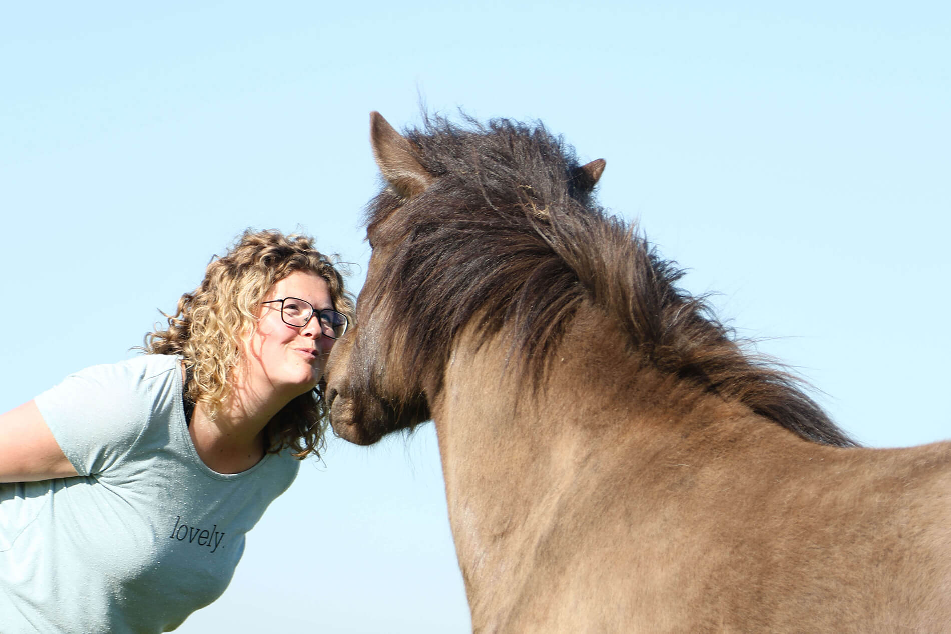 Coaching met paarden als middel voor zelfreflectie